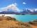 Parc National de Torres del Paine en Patagonie Chilienne. Un beau guanaco se promène au bord du lac Pehoe.