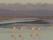 Flamants roses, coucher de soleil, Salar d'Atacama, Chili. Voyage en famille Chili