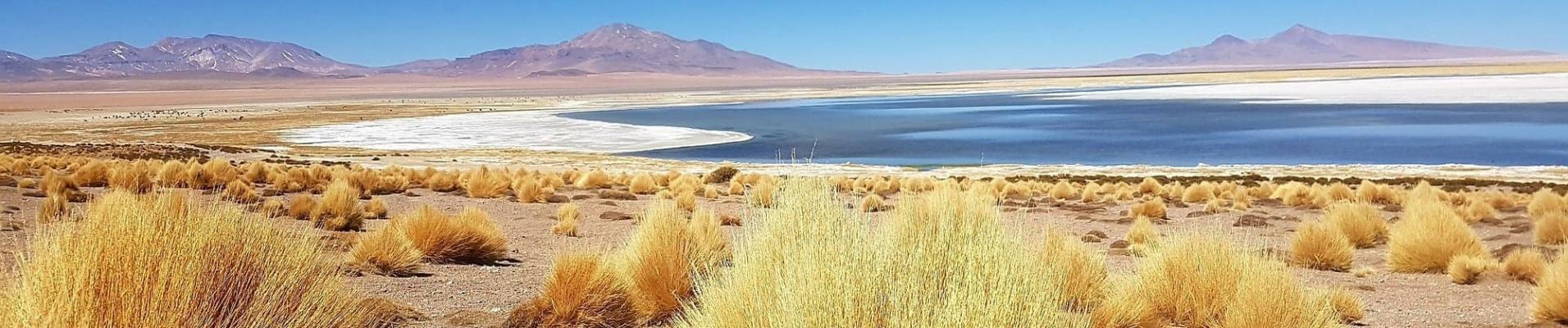 Voyager au Chili : paysages du nord, désert d'Atacama