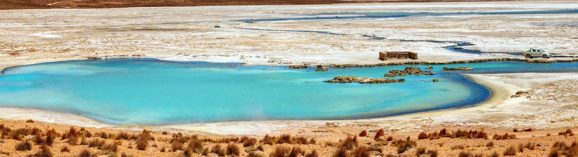 Le Salar de Surire dans l'Altiplano Chilien et ses paysages multicolores
