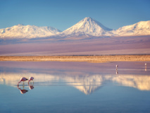 Salar d'Atacama, Chili